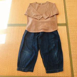 ユニクロで買い足した洋服2着。