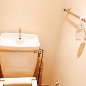 【ビビらないで聞いて欲しい】最近、素手でトイレ掃除しています。