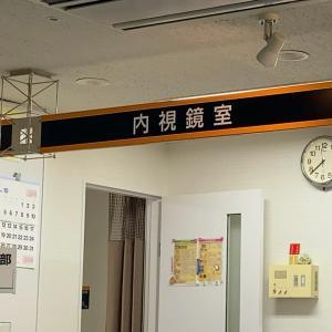 実は昨日も病院へ、疲れた。。。