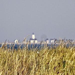 夏の終わりにミニ旅行#3 オリンピック半島ポートタウンゼン