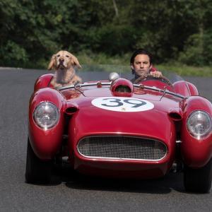 エンゾという名前の犬の映画 The Art of racing in the Rain