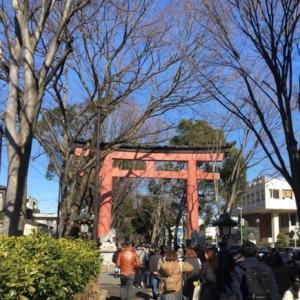 氷川神社参道脇を歩いて~