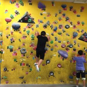 壁って登るもんじゃないね の回