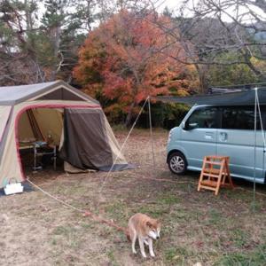 久しぶりのストーブキャンプ