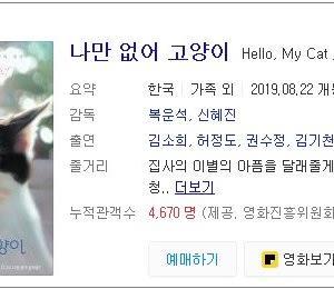 韓国映画と4匹の猫
