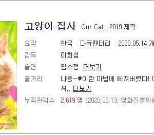 韓国映画とネコ弁当