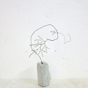 針金の蔓性植物