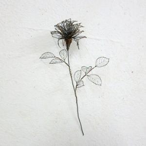 針金の夏薔薇