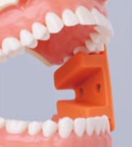 歯医者さん、怖い!③