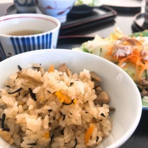 日本からのお土産で一番嬉しかった食品。乾燥ゴボウ。
