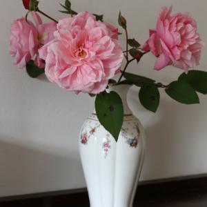 庭のバラを花瓶に生けてみました