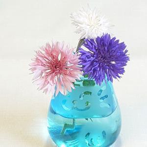 まさか自分が東京から北海道に移住するとは…ハーブの花をたまには卓上に飾ってみる。