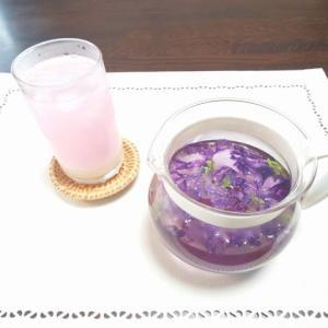 マロウブルーのハーブティー…美しい紫色に。