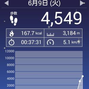 私の時速は5.1キロ。