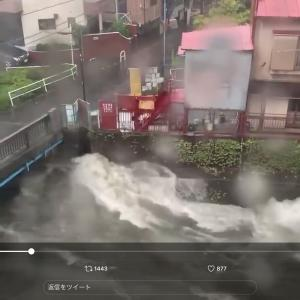 台風、、神田川もヤバイかも!?
