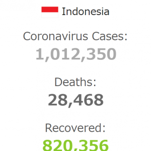 インドネシアのコロナ感染者数は100万人を突破!?中国製ワクチンは大丈夫なのか?