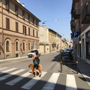 ヴァイオリンの聖地、クレモナに来た