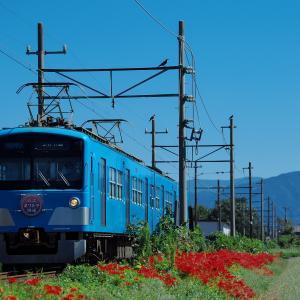 曼殊沙華と電車