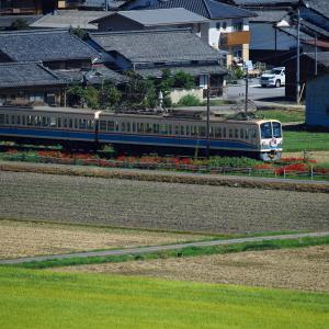 曼殊沙華と電車、その2
