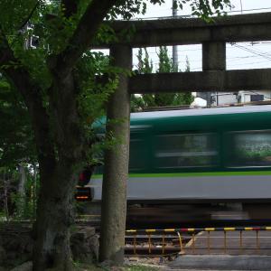 京津線、ぶらり旅(6)