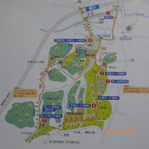 鶴川駅の自然散策コース