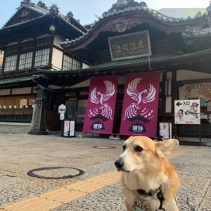 犬連れ車中泊~愛媛編その2Y(・∀・)Y