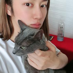 ヒチョルの愛猫ヒボムは15歳に