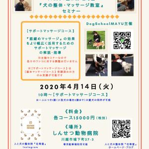 4月・埼玉県川越『犬の整体・マッサージ教室』セミナー詳細