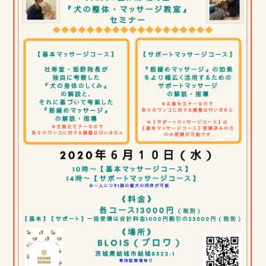茨城県『犬の整体・マッサージ教室』セミナー告知