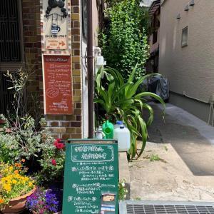 大阪開催『犬の整体・マッサージ教室』セミナー(5/23・5/24)