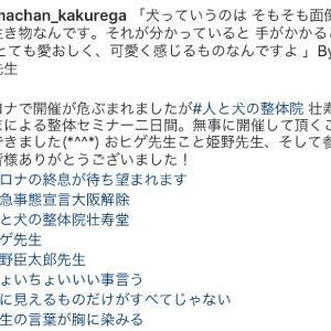 大阪開催『犬の整体・マッサージ教室』セミナー(5/23・5/24)のご感想
