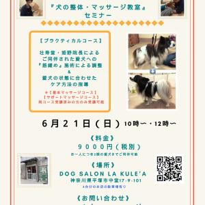 神奈川開催『犬の整体・マッサージ教室』【プラクティカルコース】セミナー《告知》