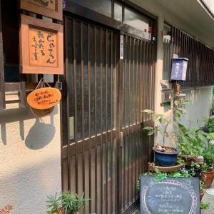 8/9(日)『犬の整体・マッサージ教室』【プラクティカルコース】セミナー