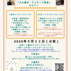 神奈川県平塚市開催『犬の整体・マッサージ教室』【基本】【サポート】セミナー告知