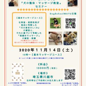 《告知》埼玉県開催『犬の整体・マッサージ教室』セミナー《11/14(土)》