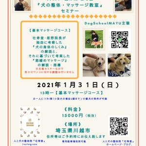 埼玉県開催『犬の整体・マッサージ教室』【基本】セミナー《1/31(日)追加開催》