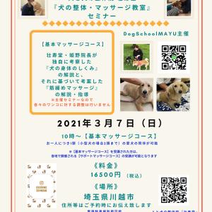 《3月開催》埼玉県川越市『犬の整体・マッサージ教室』セミナー