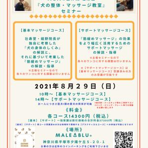 神奈川県平塚市『犬の整体・マッサージ教室』【基本】【サポート】セミナー告知《8/29(日)》