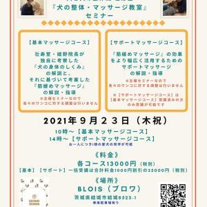 茨城県結城市『犬の整体・マッサージ教室』【基本】【サポート】セミナー告知《9/23(木祝)》