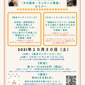 神奈川県開催『犬の整体・マッサージ教室』セミナー告知《10/30(土)》