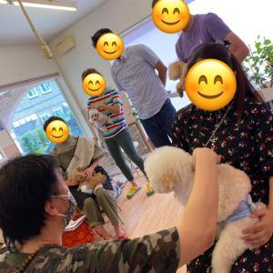茨城県開催『犬の整体・マッサージ教室』セミナー《9/23(木祝)》