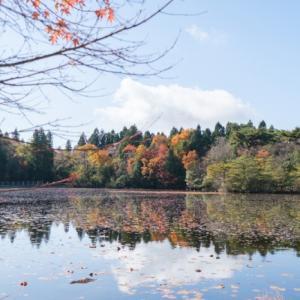 秋の終わりの氷池