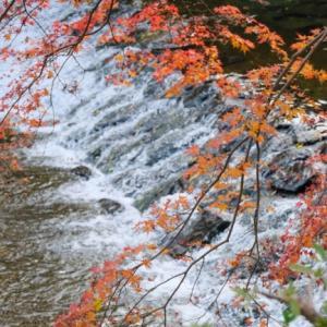 紅葉と川の流れと
