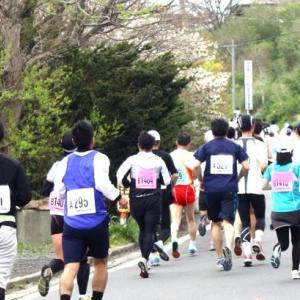 第23回四万十川ウルトラマラソン100km その5