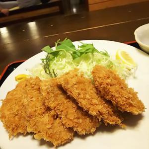 佐野市  肉のマルコウ  ヒレカツ定食
