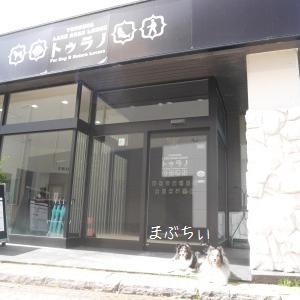 2019夏休み【北海道】さよならトゥラノ