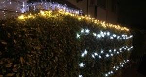 クリスマス・ライトとオーブン庫内灯