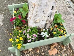 ミニ花壇とレースの週末