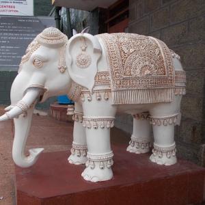 辰年・巳年の守護本尊さまは「白い象」に乗る菩薩さま♡