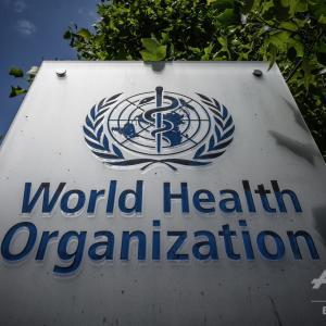 WHO、新型コロナの「特効薬存在し得ない可能性」に言及~AFP通信~
